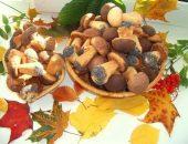 Миниатюра к статье Печенье грибочки