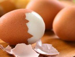 Миниатюра к статье Куриное яйцо вам поможет